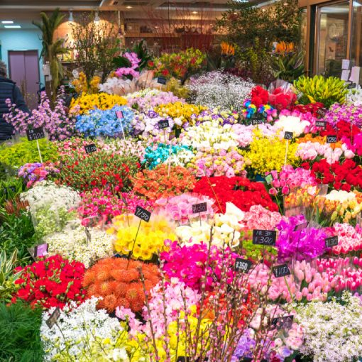 Flower Shop In Bugis